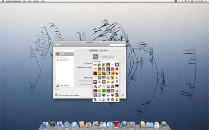 Snow Leopard includes new account avatars. The desktop background image in this picture is also new.