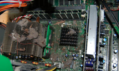 The filthy insides of a PC.