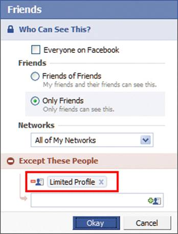 Facebook's 'Limited Profile' option: Click for full-size image.