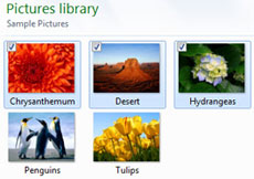 Selecting multiple files using your mouse and check boxes