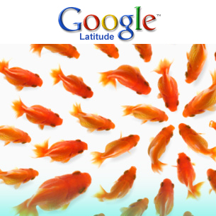 how to use google latitude