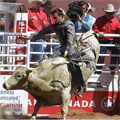 Calgary rounds up mobile environment for Stampede