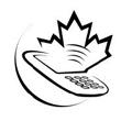 Telecom execs debate community broadband perils