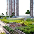 Software can keep green roof over Torontonians' heads