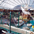 West Edmonton Mall's infrastructure supports virtual networks, hot spots