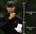 Accenture ends relationship with Tiger Woods